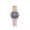 Visett-i Prestige -Multifunction- rose- gold- silver -stainless- steel- bracelet