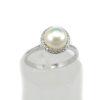 daxtylidi-perla-asimi-925