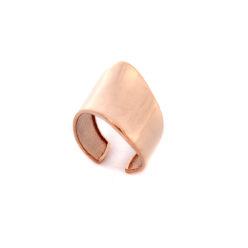 daxtylidi-roz-epixriso-asimi-925